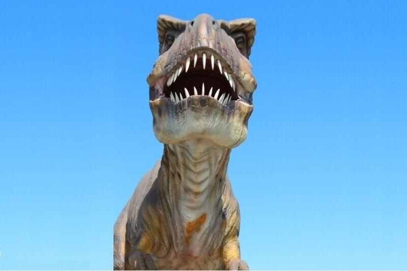 """Laevatuur ,meelelahutus """"Dino"""" pargis ja rahvustoit Kibinai perele (4 in.)"""