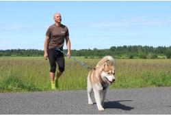Tõukekelgu matk Siberi huskydega ühele Anija