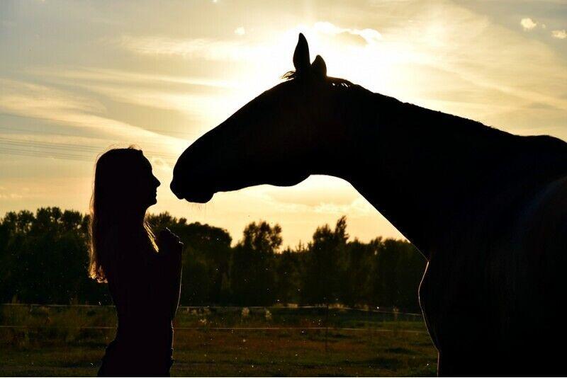 Прогулка на лошадях + фотосессия для двоих
