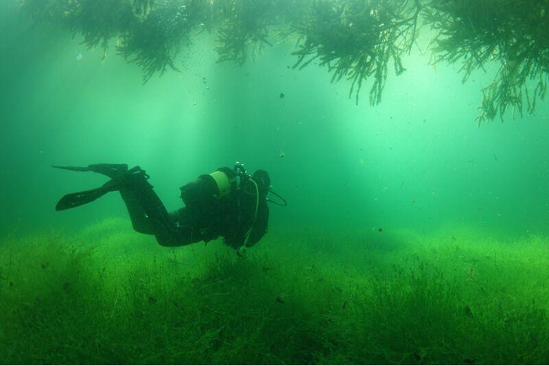 Sukeldumise algkursus Padi OWD Harjumaa
