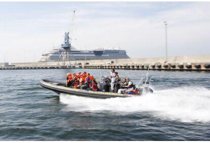 Морское сафари в Таллиннском заливе