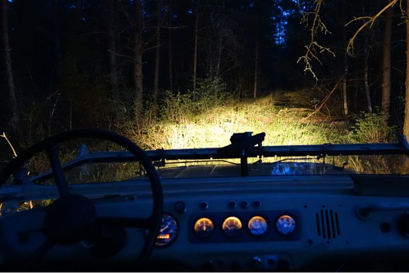 47ff302c62e Öösafari seiklus kuuele Saaremaal - KingitusteSaar