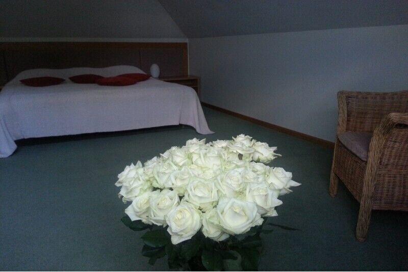 Отдых для двоих в номере LUX в Сигулде