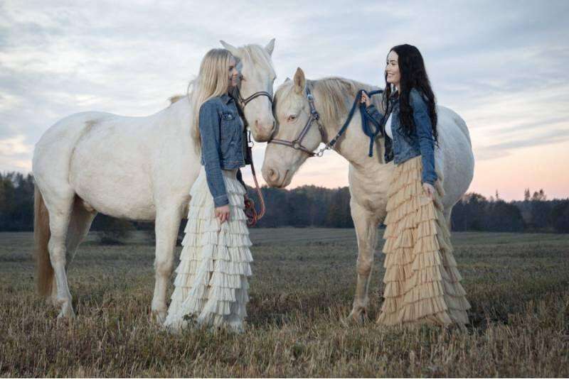 Конный поход в Мустамыйза на эстонских лошадях в муравейник Аксте