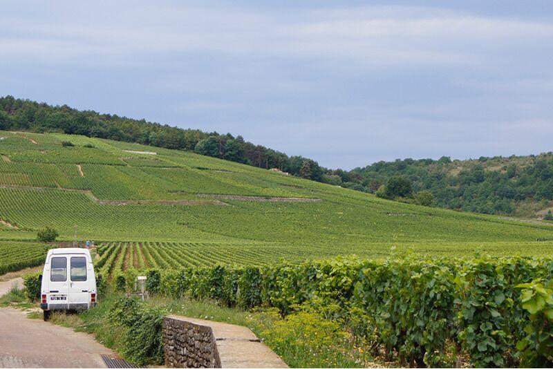 Захватывающий мир вин, часть 6: Вина Бургундии и Луары во Франции