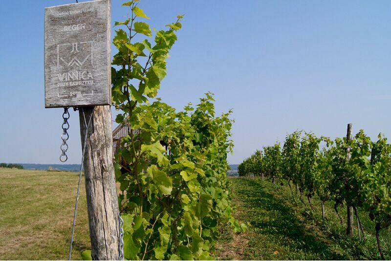 Põnev veinide maailm osa 7: Kreeka, Horvaatia, Sloveenia, Poola
