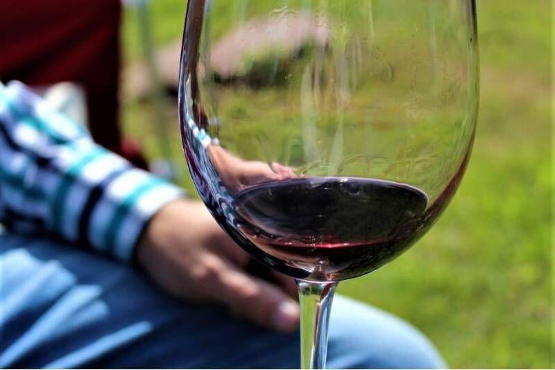 Экскурсия на винодельческое хозяйство Järiste Veinitalu с дегустацией и закусками